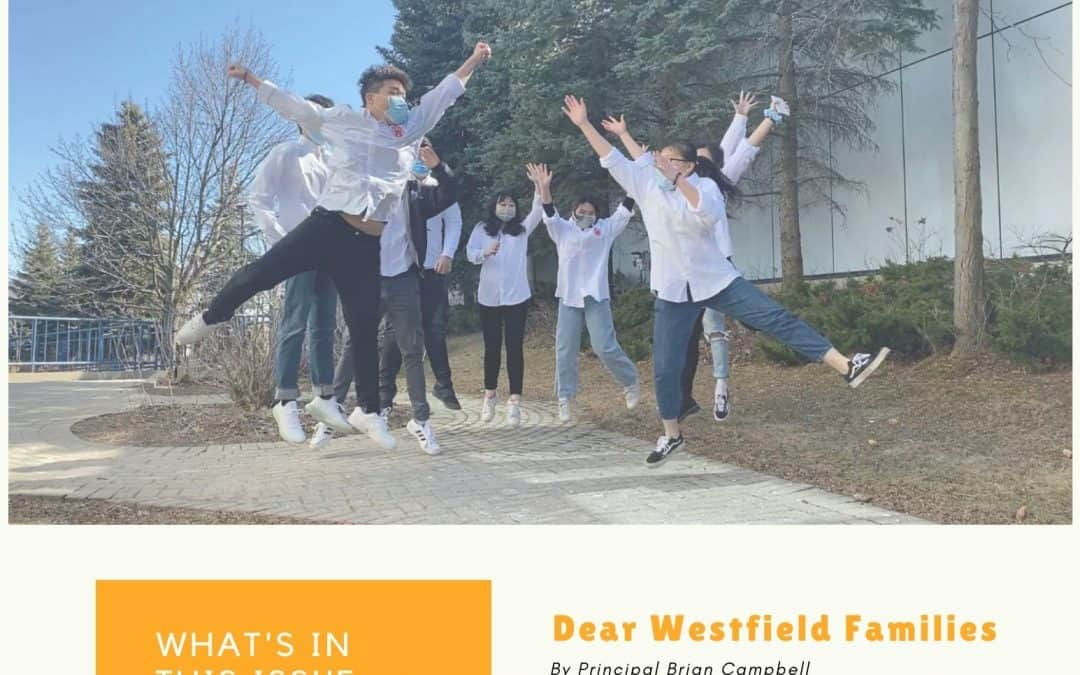 Westfield Newsletter: New edition